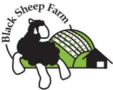 BlackSheepFarm-logo