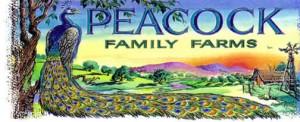 peacock-logo