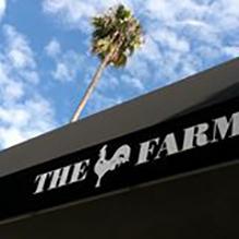 The Farms